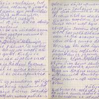 Ak139-Zigridas-Paegles-dienasgramatas-06-0062