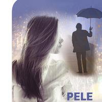 1256364-01v-Pele-slazda