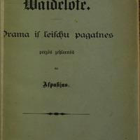 409339-01v-Vaidelote