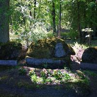 Zeberiņu dzimtas kapi