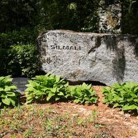 Maijas Silmales dzimtas kapi