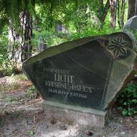 Komponistes un literātes Paulas Līcītes kapa piemineklis