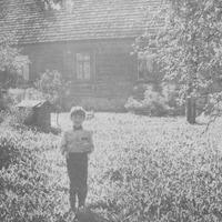 Tadenava 1989. gadā