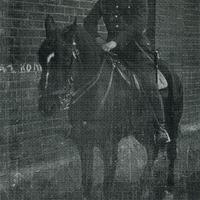 1912-1767o