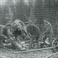 1912-1767s