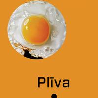 1567952-01v-Pliva